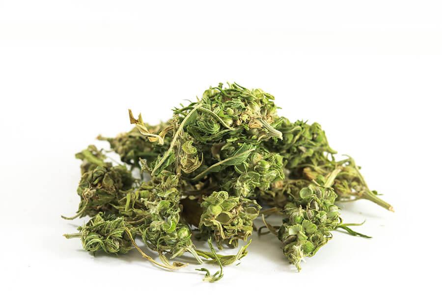 premium-hemp-tea-cannadorra