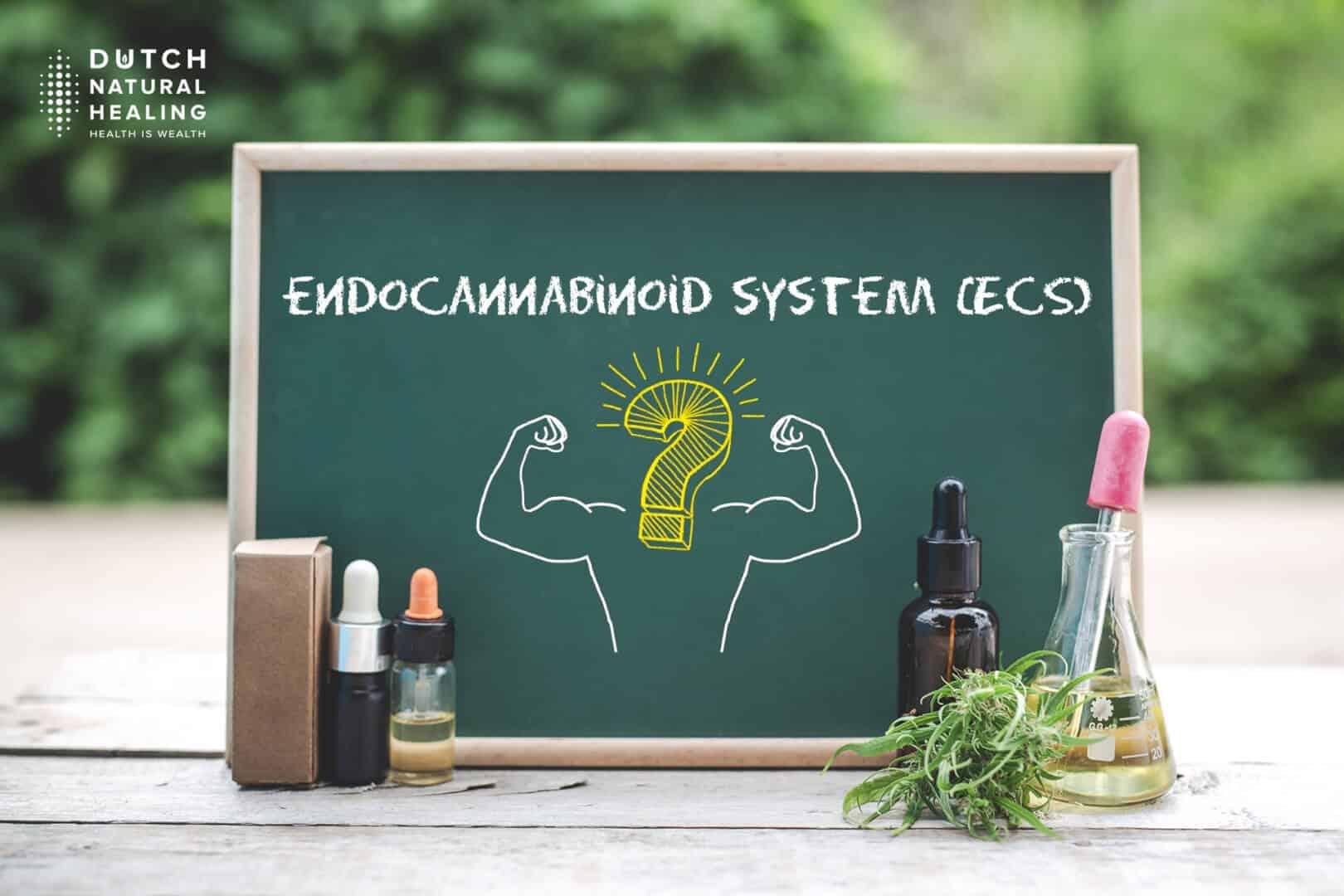 ενδοκανναβινοειδές σύστημα