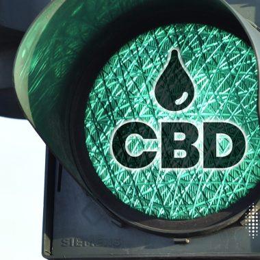 Το CBD στην κυκλοφορία «δεν επηρεάζει την οδήγησή σας», υποστηρίζει ολλανδική έρευνα