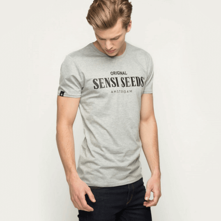 Original Sports T-Shirt Heather Grey
